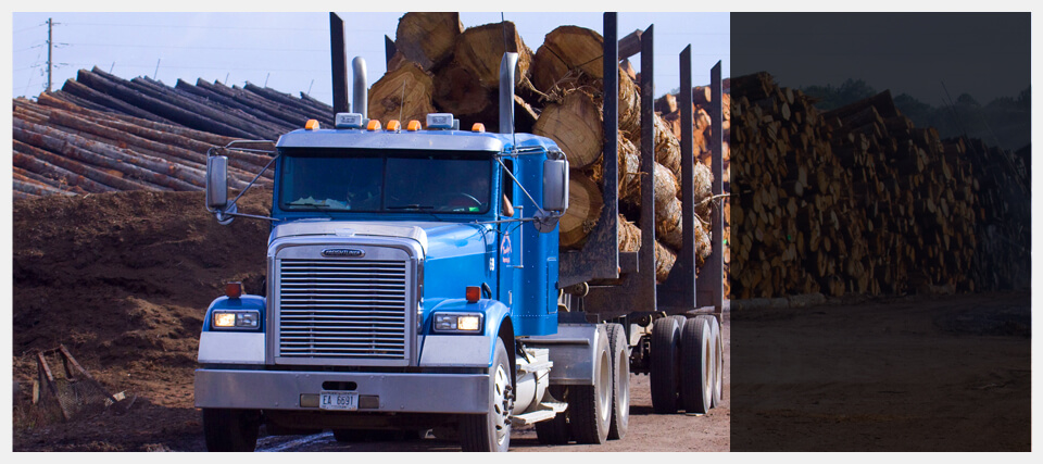Hardwood Sawmill and Lumber Manufacturer